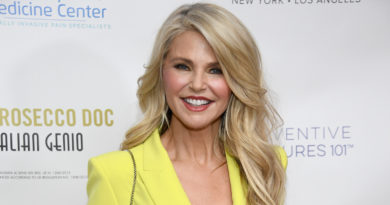 Christie Brinkley Biography, Age, Wiki, Parents, Relationship, Affair, Net Worth
