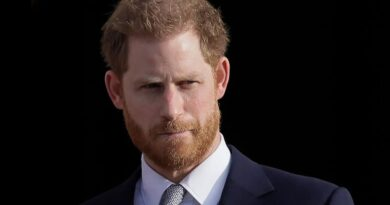 Prince Harry biography