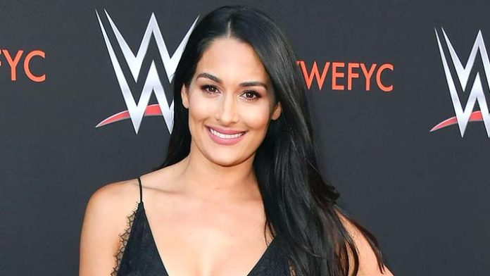 Nikki-bella-biography